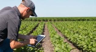 Hạt giống thông minh giúp nông dân vượt qua biến đổi khí hậu